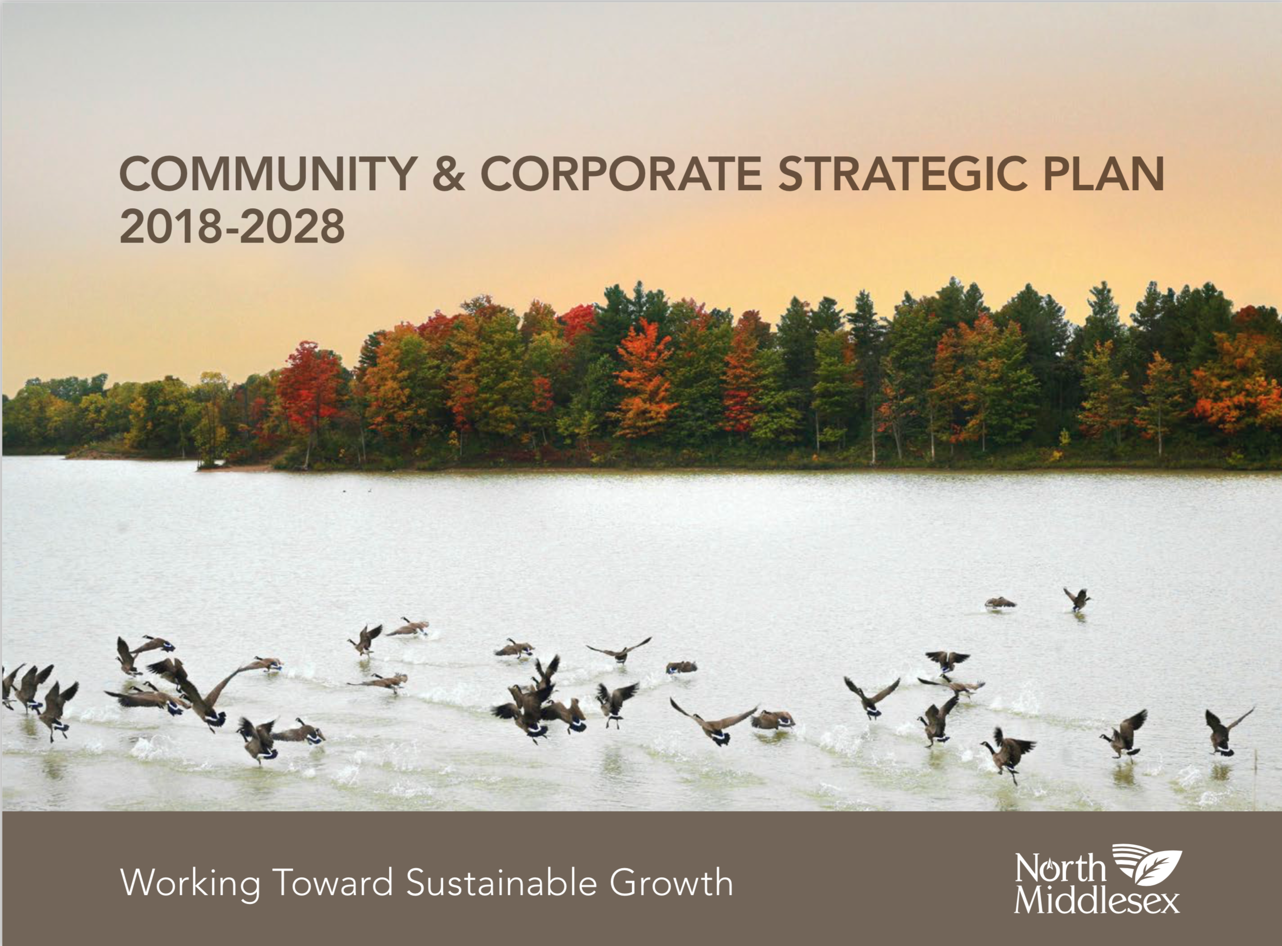pdf canadian corporate community investment benchmarking report